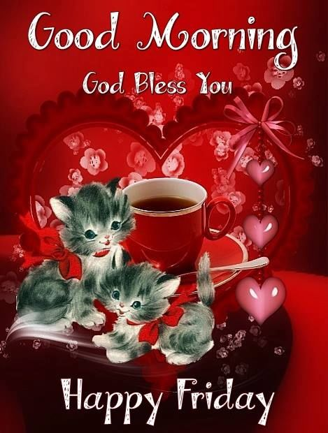 Love Kitten Good Morning Friday Image Pictures, Photos