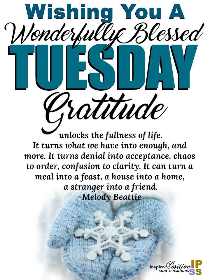 Gratitude Tuesday Pictures Photos and Images for