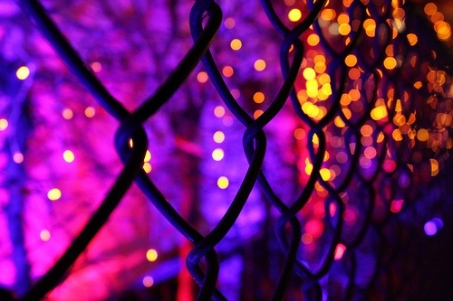Pretty Halloween Bokeh Pictures, Photos, and Images for ...