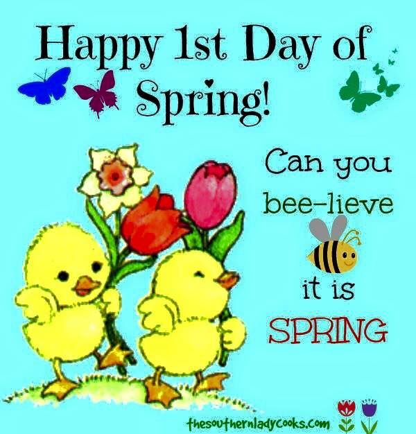 IT IS SPRING! - YouTube