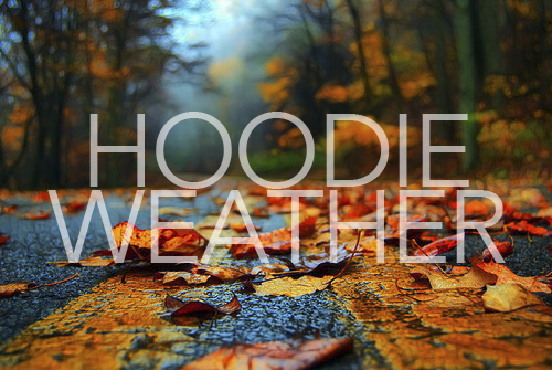 Image result for hoodie weather