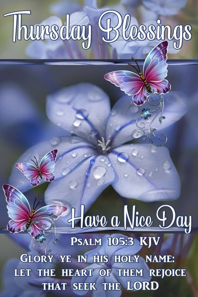 Have A Nice Day Thursday Blessings Pictures Photos And