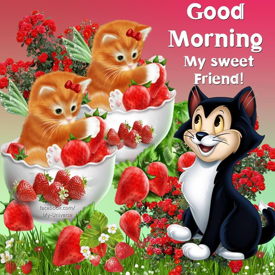My Sweet Friend Good Morning Pictures, Photos, and Images