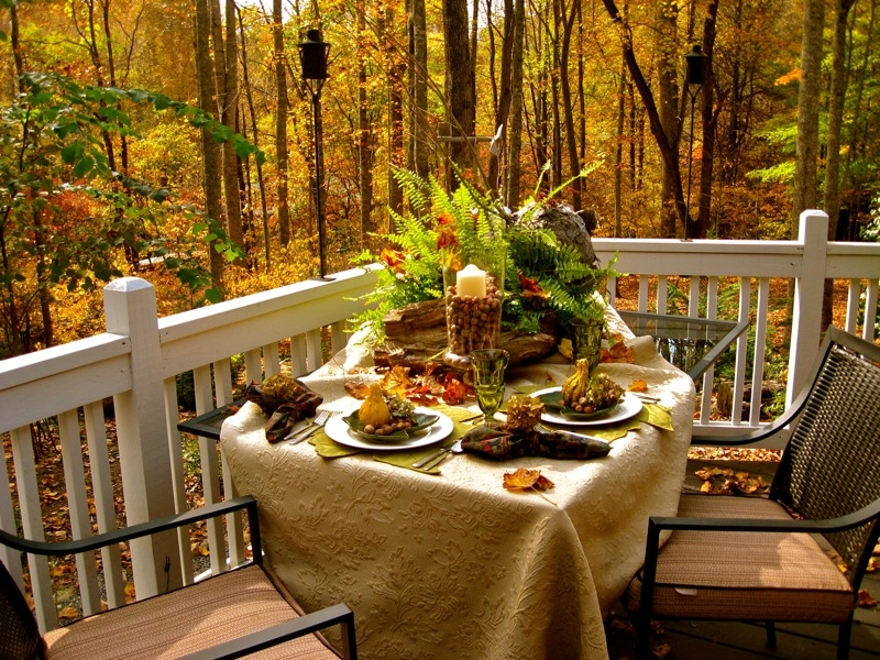 Fall Outdoor Dining Pictures Photos And Images For