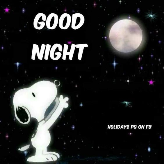 Snoopy Moon Good Night Quote Pictures, Photos, And Images