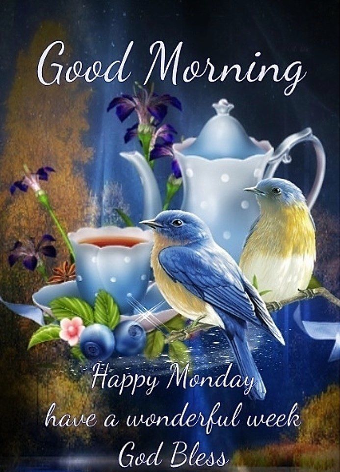 Good Morning - Happy Monday Pictures, Photos, and Images ...