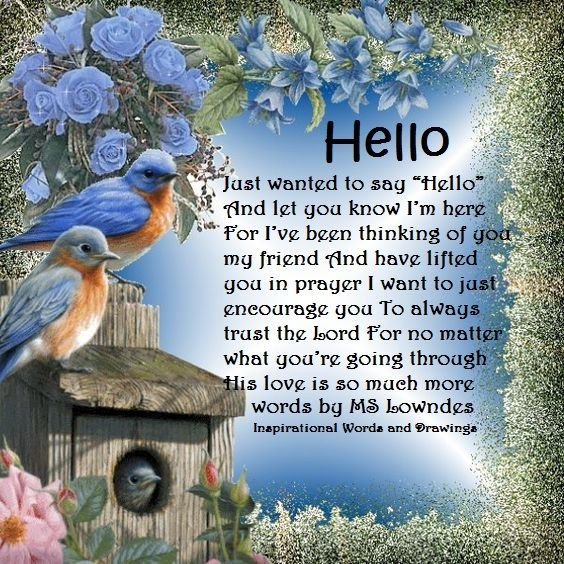 Image result for just wanted to say hello