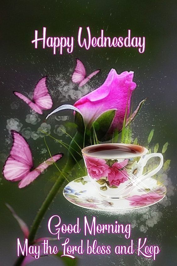 Pink Butterfly Happy Wednesday Good Morning Quote Pictures