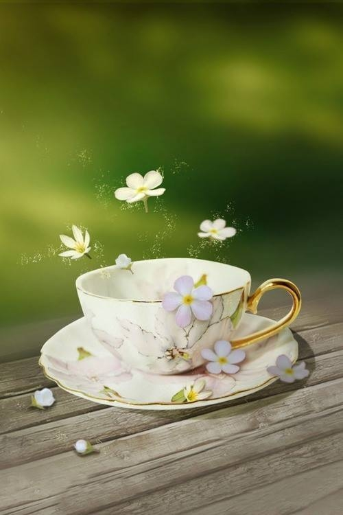 Magical Tea Cup Pictures Photos And Images For Facebook