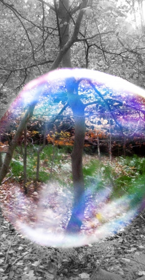 Looking Through The Bubble Pictures Photos and Images