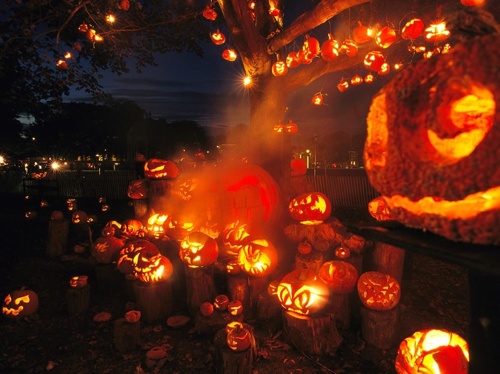Lots Of Jack O Lanterns Pictures Photos And Images For