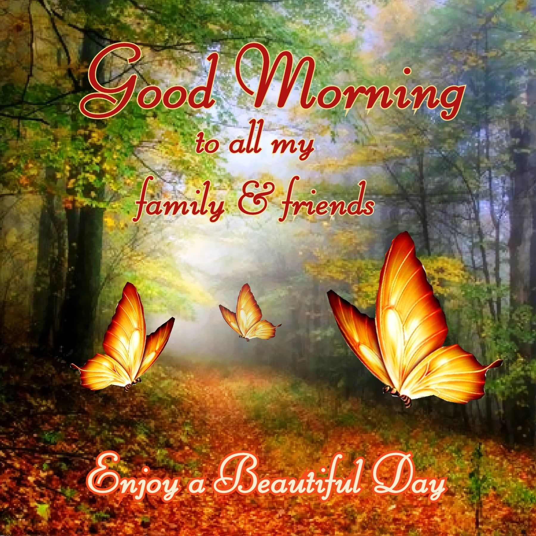 Family And Friend Butterfly Good Morning Quote Pictures, Photos ...