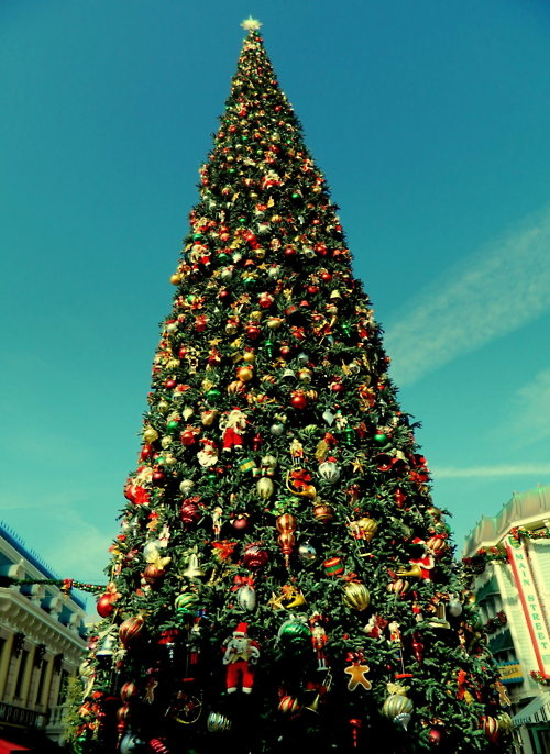 big beautiful christmas tree on main street - How To Decorate A Big Christmas Tree