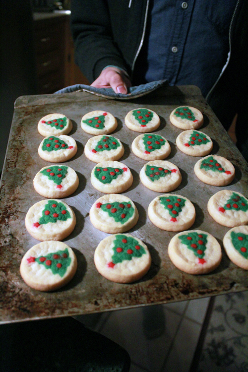Christmas Tree Sugar Cookies Pictures Photos And Images For