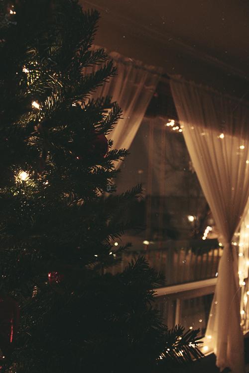 Christmas Lights For Wedding