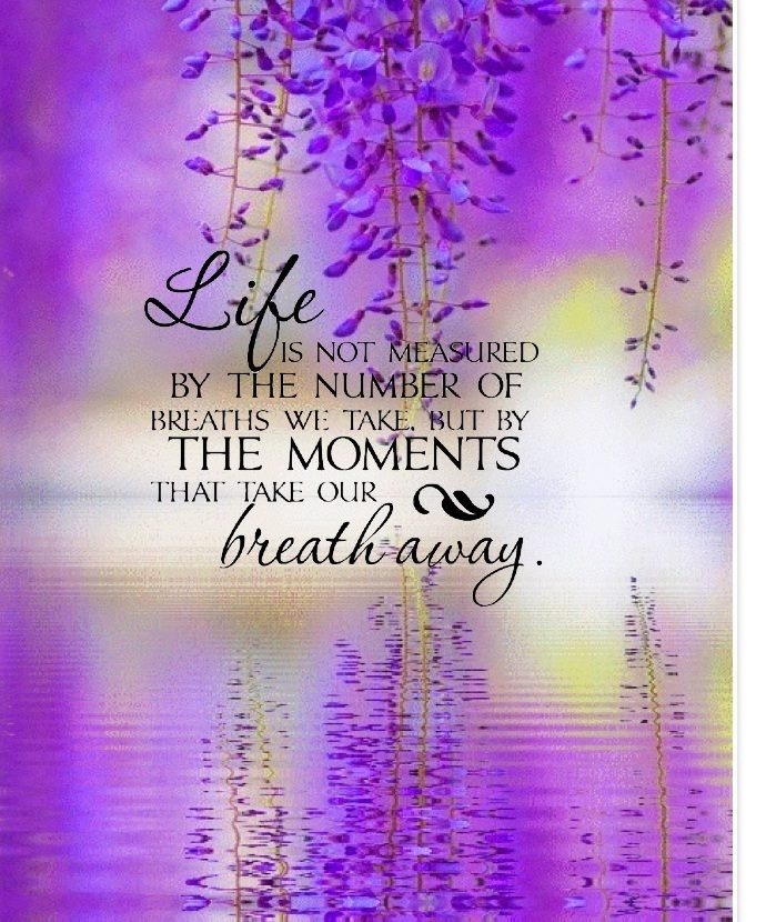 Life Is Not Measured By The Breaths Quote Custom Life Is Not Measured Pictures Photos And Images For Facebook