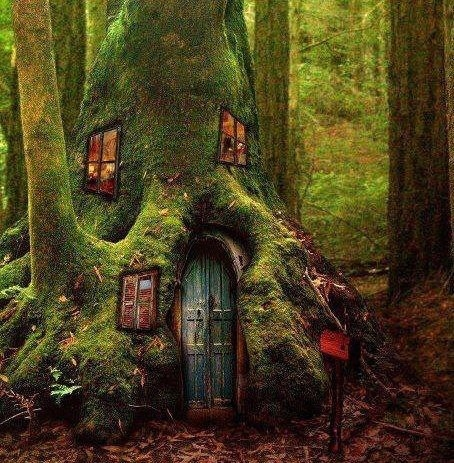 how to add a home in the forest