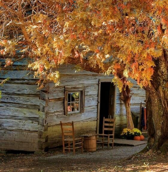 Autumn Cabin Pictures, Photos, And Images For Facebook