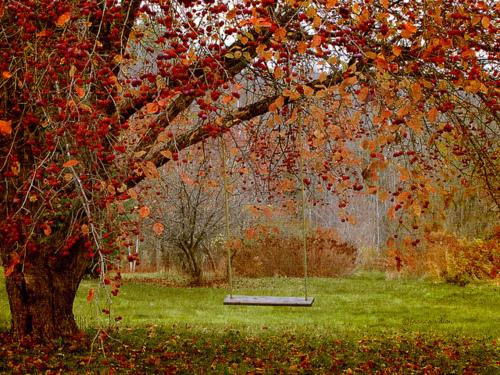 Качели осень картинки