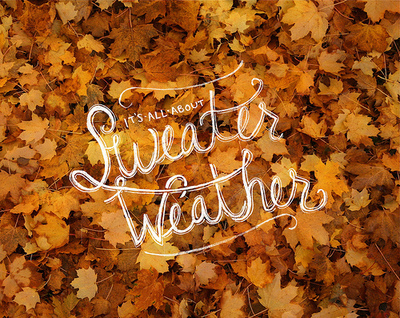 It\'s All About Sweater Weather Pictures, Photos, and Images ...