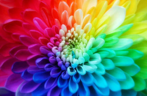 Tie Dye Flower Pictures, Photos, And Images For Facebook
