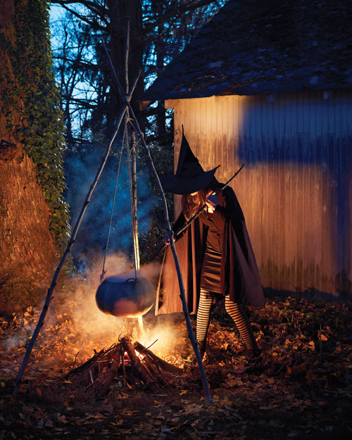 Witch At The Cauldron Pictures, Photos, And Images For