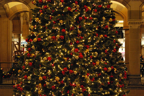Big Christmas Tree Pictures, Photos, And Images For