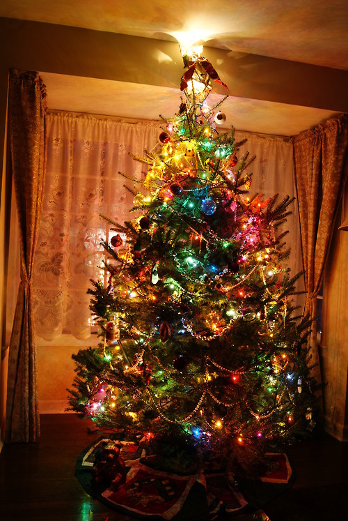 colorful lighted christmas tree