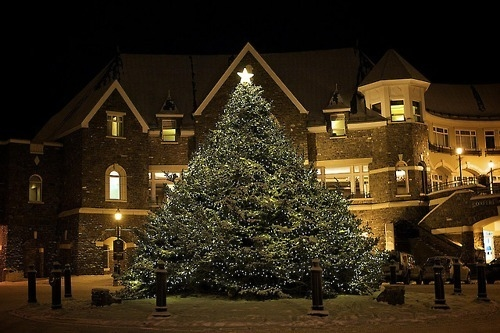 Mansion Christmas Tree Pictures Photos And Images For Facebook