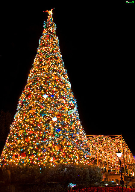 Tall Decorated Christmas Tree Pictures Photos And Images