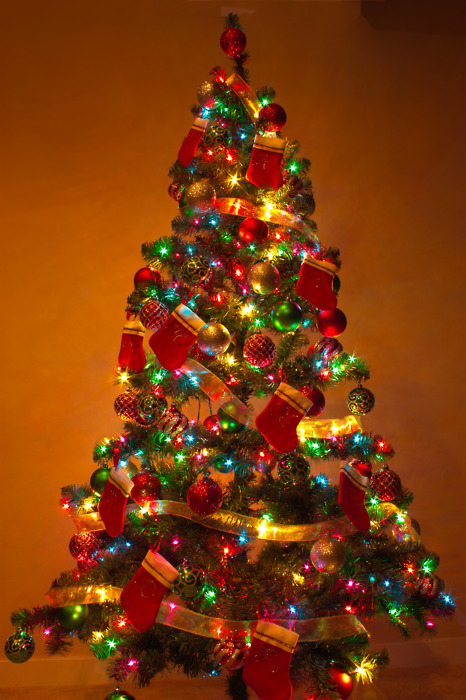 The Perfect Christmas Tree Pictures, Photos, and Images for ...
