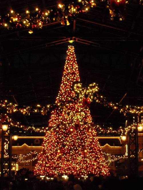 Christmas Tree At Tokyo Disneyland Pictures, Photos, and