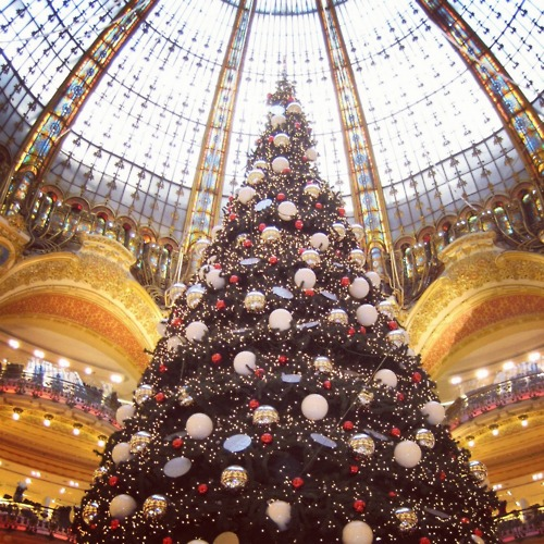 Christmas Tree In Paris Pictures, Photos, and Images for Facebook ...