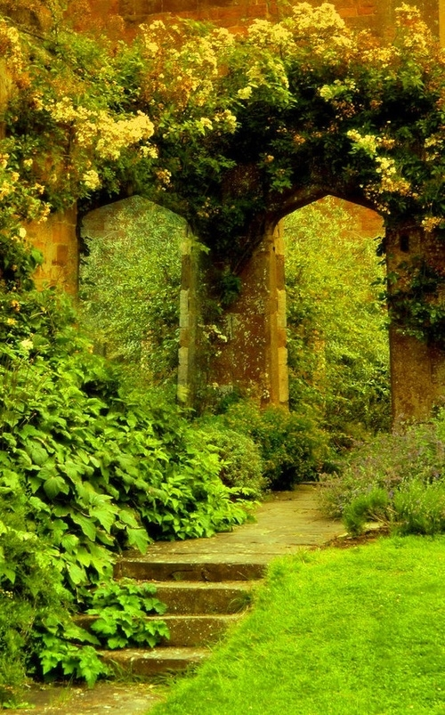 Natural Garden Pictures, Photos, and Images for Facebook