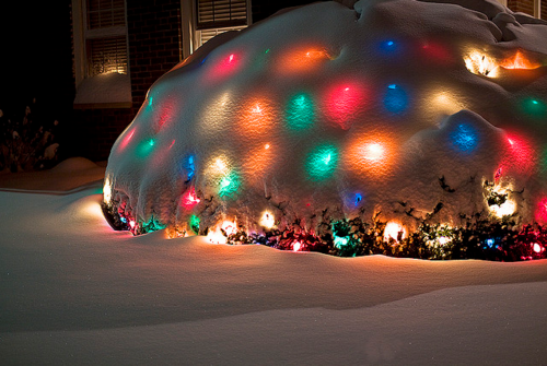 Snow covered christmas lights pictures photos and images for
