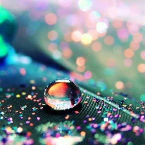 Colorful Water Droplet Pictures Photos And Images For