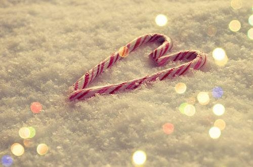 Candy Canes In Snow Pictures Photos And Images For