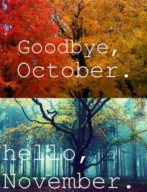 Hello November Picture...