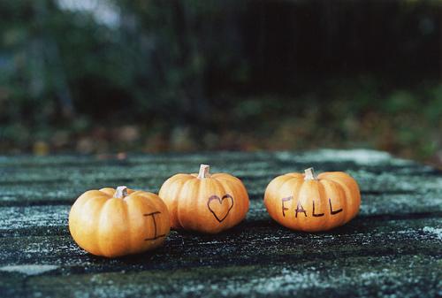 fall pumpkins - Fall Pumpkins