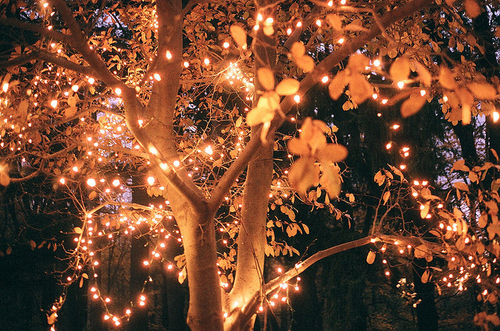Autumn leaves and lights pictures photos and images for Beautiful lighting ideas