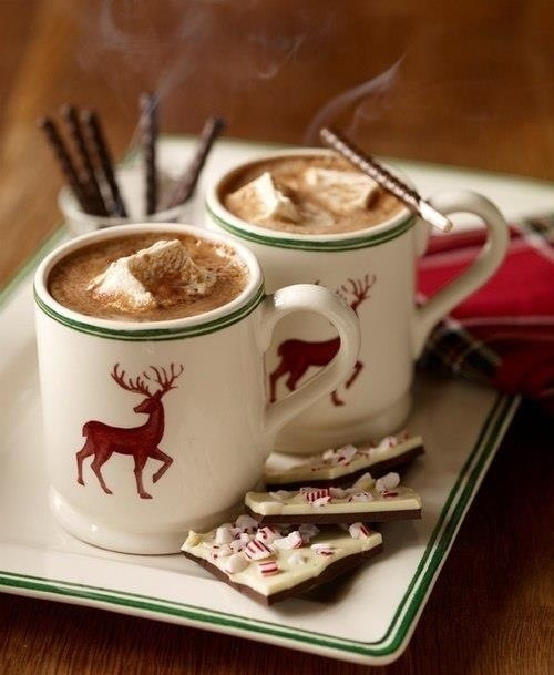 Winter Mugs Of Cocoa Pictures, Photos, And Images For