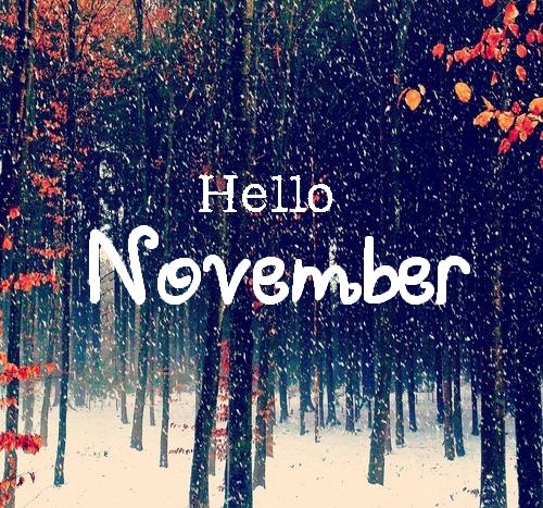 Resultado de imagen para hello november