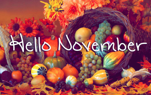 Cute Hello November Flowers Saying