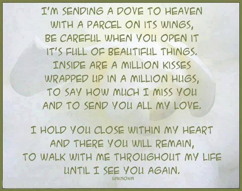 a letter to my dad in heaven sending a dove to heaven pictures photos and images for 28771 | 45968 Sending A Dove To Heaven