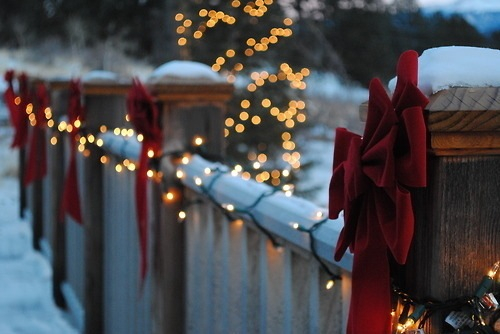 White Christmas Lights Pictures, Photos, and Images for Facebook ...