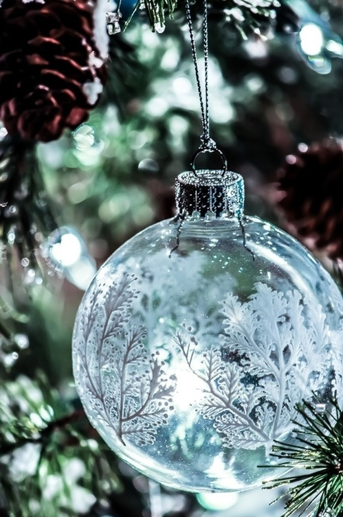 Winter Snow Ornament Pictures, Photos, and Images for ...