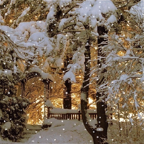 Beautiful Country Kitchen Pictures Photos And Images For Facebook Tumblr Pinterest And Twitter: Pretty Snow Scene Pictures, Photos, And Images For