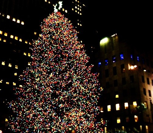 Christmas Tree In Ny: Outdoor Christmas Tree In The City Pictures, Photos, And