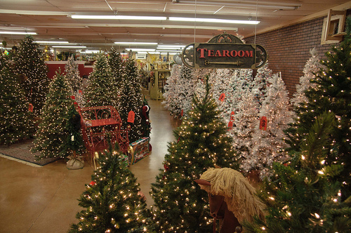 Christmas Tree Shopping Pictures, Photos, and Images for Facebook ...