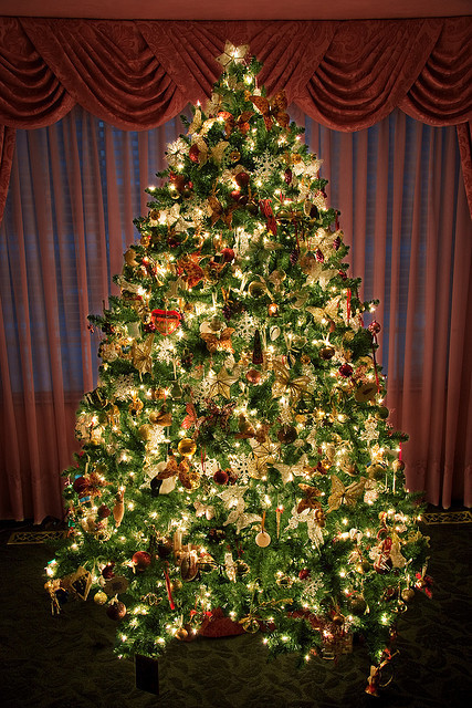 Amazing Christmas Tree s and for